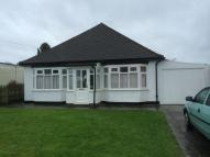 Detached Bungalow to rent in Sports Road, Glenfield...