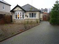 2 bedroom Detached Bungalow in Pierremont Gardens...