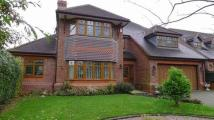 5 bedroom Detached house to rent in Ashby Road, Long Whatton