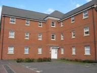 Apartment to rent in Lime Tree Grove...