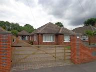 4 bed Detached Bungalow in Selsdon Avenue, Reading