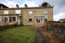 semi detached home to rent in HALL ROAD, Esh, DH7