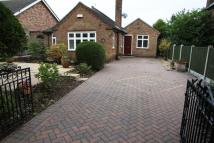 2 bed Detached Bungalow in Kimberley Road, Nuthall...