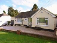 Bungalow for sale in Collaton St Mary - Ref:...