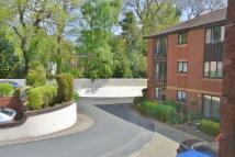 Retirement Property in PAIGNTON - Ref: 86Y
