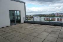 Flat in Large Terrace