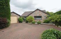 3 bed Bungalow for sale in Rhewl, Ruthin