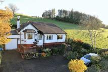 Detached Bungalow for sale in Clwyd Gate Bungalows...