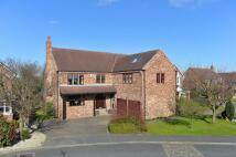 5 bedroom Detached home in Manor Farm Close...