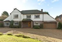 4 bed Detached house in Miles Lane, Cobham...