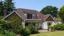 Fairmile Lane Bungalow for sale