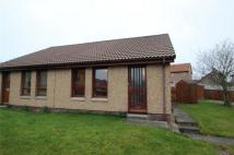 Semi-Detached Bungalow to rent in 33 Fulmar Road...