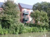 2 bedroom Flat to rent in Pipistrelle Drive...