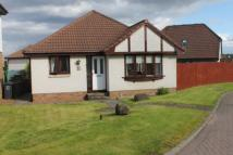 Detached Bungalow in North Berwick Gardens...