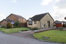 Detached Bungalow for sale in Nairn Way, Westerwood...