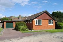Bungalow to rent in Ferndown, Emerson Park