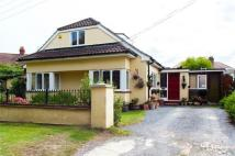 Detached Bungalow for sale in Thundersley Park Road...