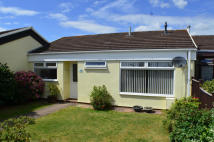 Bungalow to rent in Elm Close, Broadclyst...
