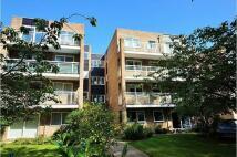 Flat to rent in Brackley Road, Beckenham...