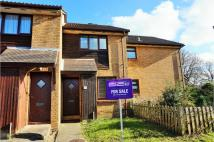 2 bed Terraced house for sale in Celandine Avenue...