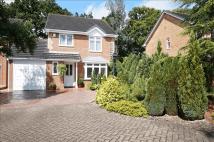 Edwina Drive Detached house for sale