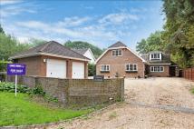 4 bed Detached house in Sandford Lane, Hurst...