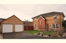 Detached house for sale in Kestrel Close, Cambridge...
