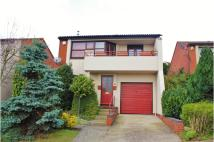Detached property for sale in Seaview Avenue, Basildon...