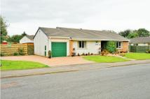Bungalow for sale in Barncroft Close...