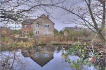 7 bed Detached property for sale in Ilketshall St. John...