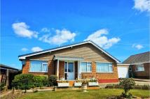 Detached Bungalow for sale in Culver Way, Yaverland...