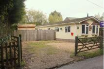3 bedroom Bungalow in Blissford, Fordingbridge...