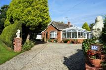 3 bed Bungalow in Fen Road, Spilsby...