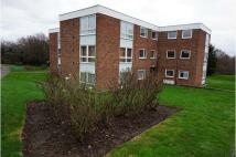 2 bed Flat in Bembridge Gardens...