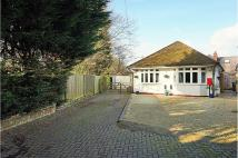 Bungalow in The Drove, Hedge End...