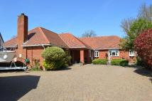 Detached Bungalow for sale in Pensham Hill, Pershore...