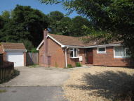 Detached Bungalow for sale in Bramble Way, Bransgore...
