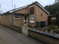 Detached Bungalow to rent in Medworth Place...