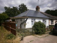 Semi-Detached Bungalow to rent in York Gardens, Wisbech...