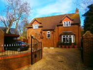 Detached property to rent in Bevis Lane...