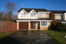 Detached property to rent in Pippin Lane...