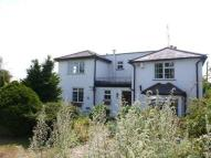 Maidstone Road  house to rent