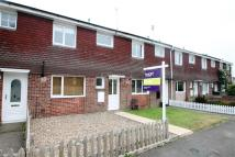 Terraced property to rent in Colne Chase, Witham