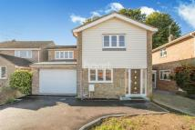 Detached home to rent in Juniper Road, Chelmsford