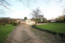 4 bedroom Bungalow in De Beauvoir Chase...
