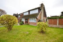 Detached property in Janmead, Brentwood...