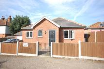 Detached Bungalow in Fairleigh Road, Pitsea...