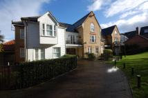 Duplex to rent in Sawyers Grove, Shenfield...