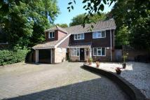 Detached house to rent in GREAT OAKS, SHENFIELD...