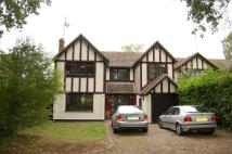 5 bed Detached home to rent in HALL GREEN LANE...